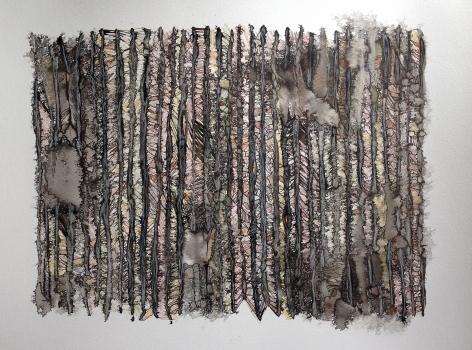 Sara Schneckloth, Coyote Fence III, 2014