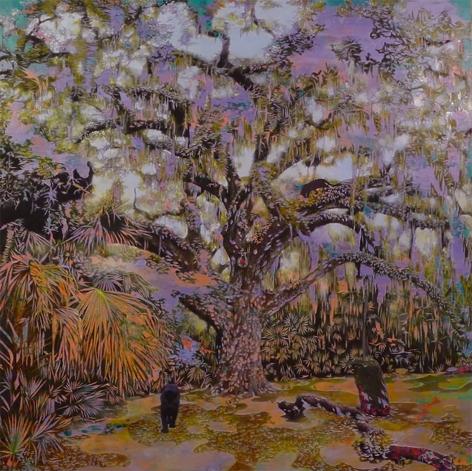 Bradley Castellanos, Fairchild Oak, 2020