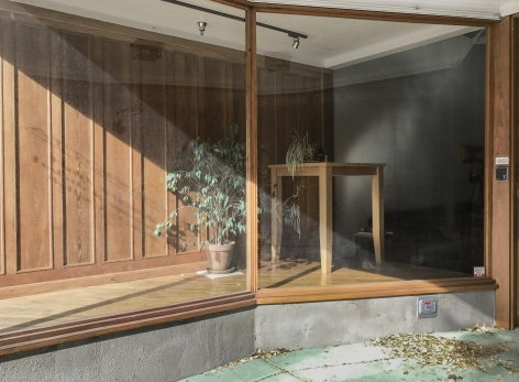 "Exhibition Lab, Jennifer Baumann - ""Store Front with Plants"", 2018"