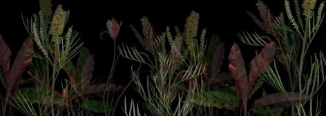 """Exhibition Lab, Elizabeth Panzer - """"PlantScape Op.3"""", 2018"""