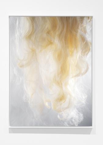 Joseph Desler Costa, Blonde, 2017