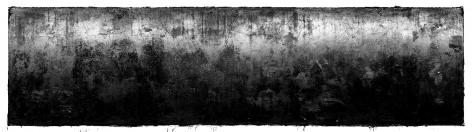 Wyatt Gallery + Hank Willis Thomas, 50C:9-367-9, 2014