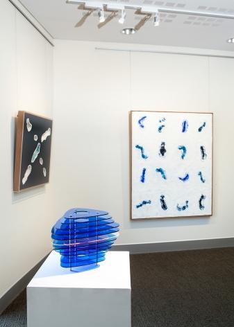Colleen DaRosa Luminous Installation View Lone Goat Gallery 2019