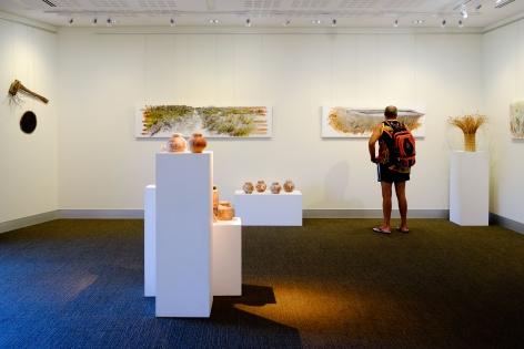 Bundjalung Heathland  Installation View  2016 Lone Goat Gallery