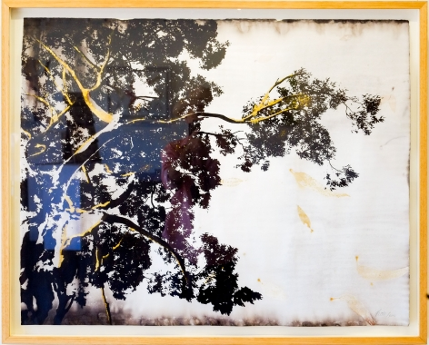 Anne Leon Its all about the light Plant-dyed paper with screen-print and gold leaf 2016