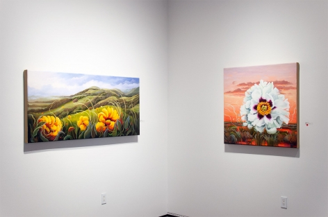 Installation photograph of PHOEBE BRUNNER: A Wild Delight with Hi Ho and Heartbeat
