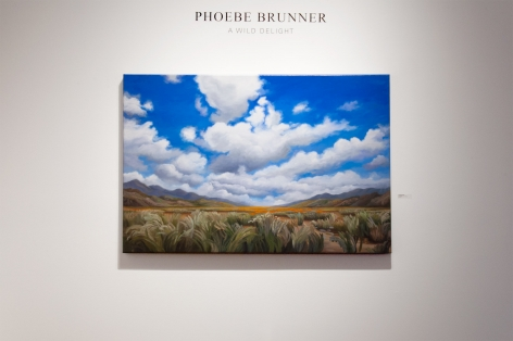 Installation photograph of PHOEBE BRUNNER: A Wild Delight with Coming Home