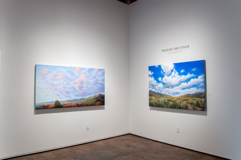 Installation photograph of PHOEBE BRUNNER: A Wild Delight with Coming Home and The Persistence of Undeniable Beauty