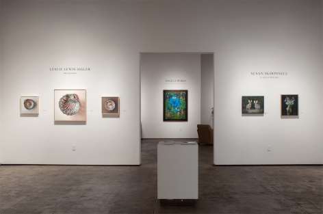 Installation photograph of LESLIE LEWIS SIGLER: Belonging and SUSAN McDONNELL: A Quiet Nature