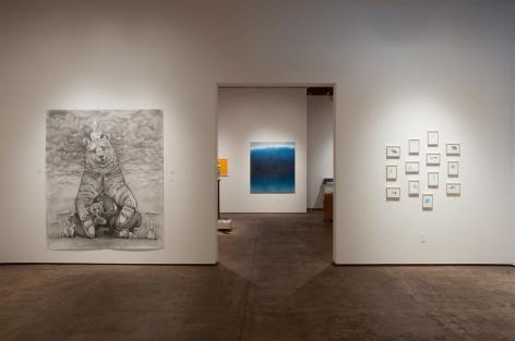 Contemporary Bear Area Artists Installation photograph, Adonna Khare, Natalie Arnoldi, Nicole Strasburg