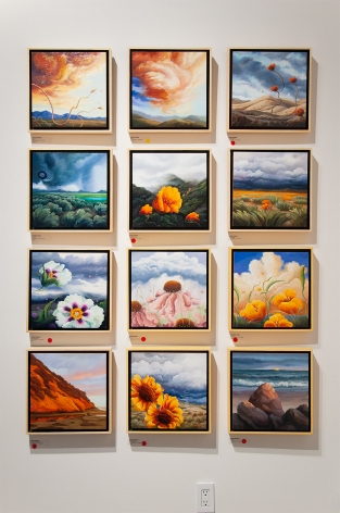 Installation photograph of PHOEBE BRUNNER: A Wild Delight with many 12 x 12 inch paintings