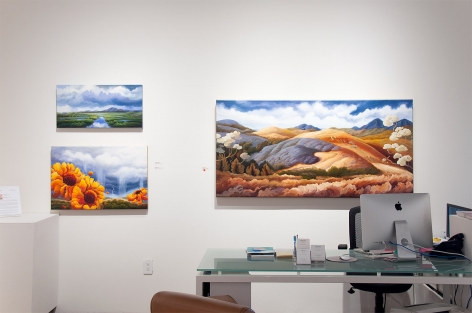 Installation photograph of PHOEBE BRUNNER: A Wild Delight with Sometimes a River, Bounce, and The Promise of Abundance
