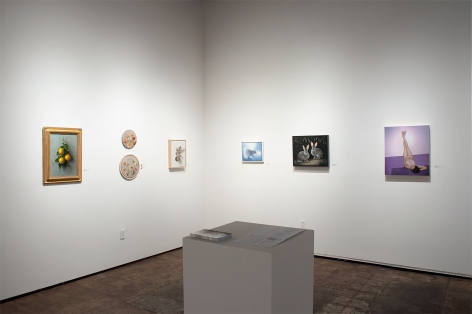 Installation photograph of REAL WOMEN: Realist Art by American Women, Sarah Lamb, Jordan Marshall, Leslie Lewis Sigler, Susan McDonnell, Laura Krifka