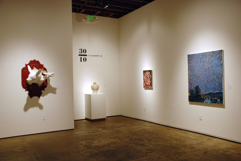 10 UNDER 30, 2013 installation photograph, Clare Little, Will Simons, Mike Nava, Taj Vacarella