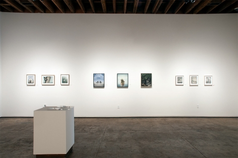 Installation photograph of SUSAN McDONNELL: A Quite Nature