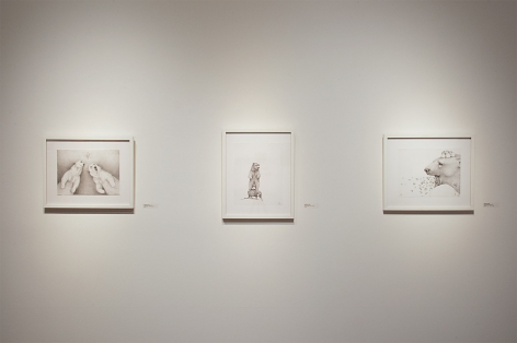 Contemporary Bear Area Artists Installation photograph, Adonna Khare