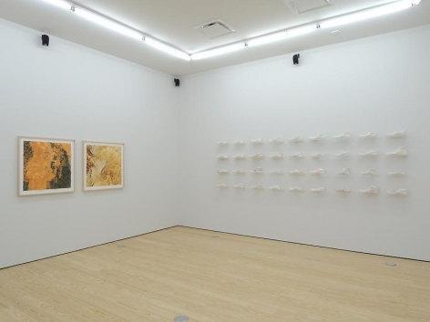 Clarissa Tossin, Study for a Landscape, Installation view, 2013.