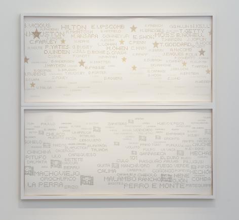 Miguel Ángel Rojas, El camino corto. Diptych, Ed. 1/3 [Edition of 3], 2010. Cut coca leaf and dollar bills, 35 13/32 x 80 5/16 in.each