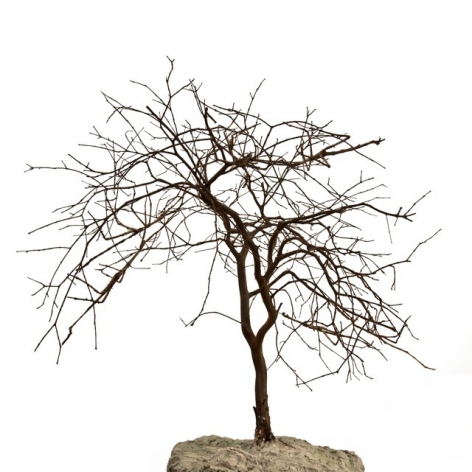 Maria Fernanda Cardoso, Stick Tree, Edition 2/3, 2010.  Archival pigment print on 300g watercolor paper, 15 3/4 x 15 3/4 in.