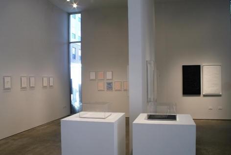Gabriel de la Mora, Sicardi Gallery installation view, 2009