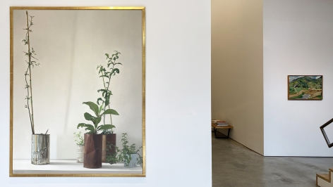 Installation view of the exhibition Nature at Sicardi Ayers Bacino, 2020.