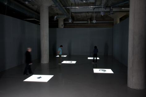 ExhibitionOscar Muñoz: Documentos de la Amensia, Museo Extremeno e Iberoamericano de Arte Contemporaneo [MEIAC], Spain, 2008.