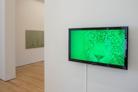 Melanie Smith, Green is the Colour, Installation view, 2014.