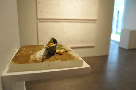Miguel Ángel Rojas,At the Edge of ScarcityExhibition, Sicardi | Ayers | Bacino, 2011