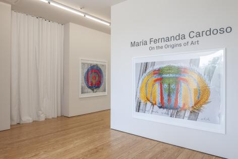 Maria Fernanda Cardoso:On the Origins of Art. Sicardi   Ayers   Bacino, 2018