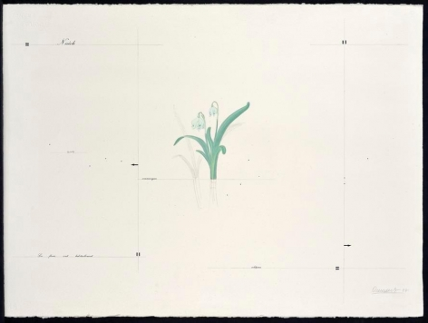 Marie Orensanz, solitaires, 1977. Acrylic and mixed media, 22 1/16 in. x 29 15/16 in.