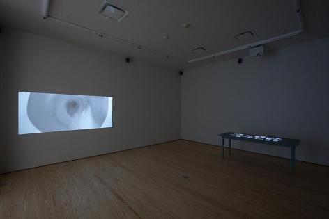 Oscar Muñoz, Installation view, 2012.