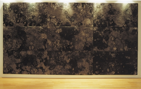 Miguel Ángel Rojas, La cama de piedra, 2000. Polyptych: Ink and silver leaf on polyester filled canvas. 36 3/16 x 66 7/8 in. each. Collection: Museo Nacional de Colombia