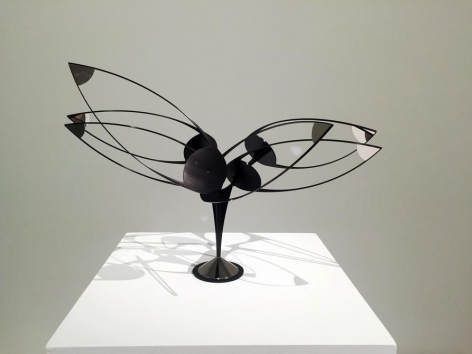 Pedro de Movellan, Flying Dutchman, 2016. Black anodized aluminum, nickel plated aluminum, stainless steel, 23x 35 in. / 58.4 x 88.9 cm.