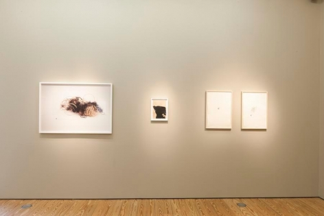 Liliana Porter. The Order of Things and Other Works. Sicardi Gallery, 2017