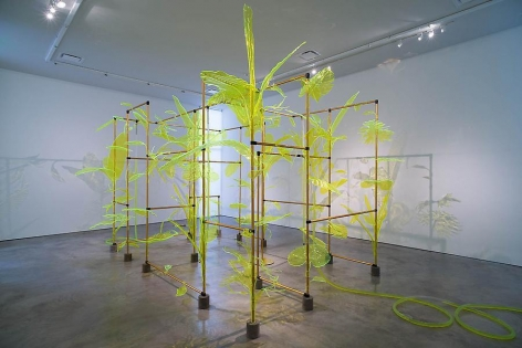 Thomas Glassford, Afterglow, Sicardi Gallery installation view, 2014