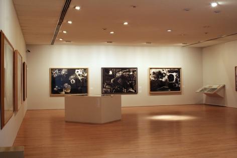 Miguel Ángel Rojas, installation view 2007 Objetivo-Subjetivo [partially developed photographs] Museo de Arte del Banco de la República, Bogotá, Colombia