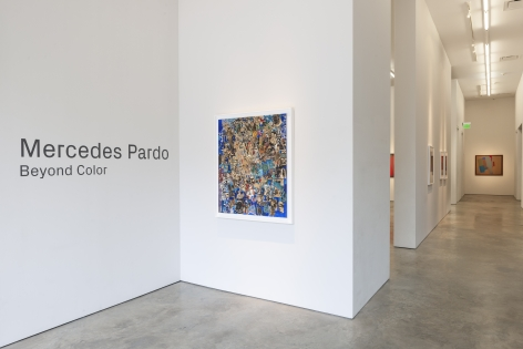 Mercedes Pardo:  Beyond Color
