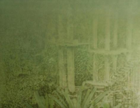 Melanie Smith, Selva V, 2013. Acrylic enamel on acrylic, 100 cm x 130 cm.