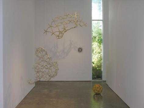 Maria Fernanda Cardoso, Sicardi Gallery 2006