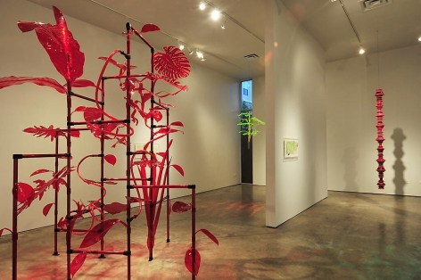 Thomas Glassford, Jungala, Sicardi Gallery installation view, 2011