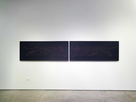 Miguel Angel Rojas, Sicardi Gallery installation view, 2006