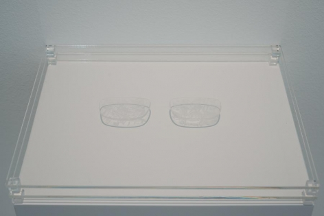 Marco Maggi, Points of View (Drawing Glasses), 2010-2012. Cuts on two high density lenses, 6 in. x 2 in. x 2 in.