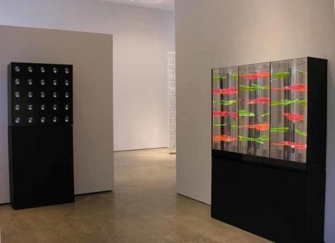Martha Boto, Gregorio Vardanega, Sicardi Gallery installation view, 2007