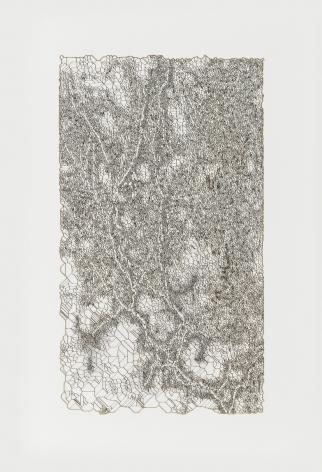 """Gustavo Díaz, De la serie: """"Variaciones sobre un bosque hipotetico previo a la Gran Bifurcacion. Modelo 008/ Era Prearbolitica"""", 2019. Cut out paper & pencil, 19 3/8 x 13 3/4 x 2 in. (49.2 x 34.9 x 5.1 cm.)"""