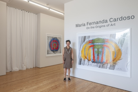 Maria Fernanda Cardoso:On the Origins of Art. Sicardi | Ayers | Bacino, 2018