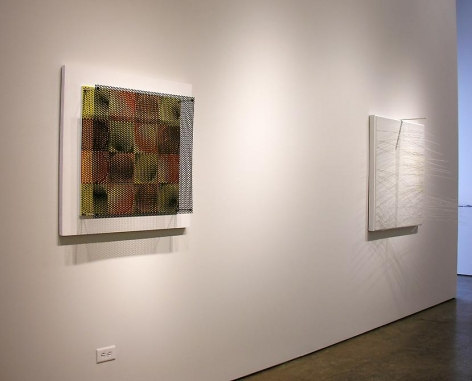Antonio Asis, Jesús Rafael Soto, Sicardi Gallery installation view, 2010