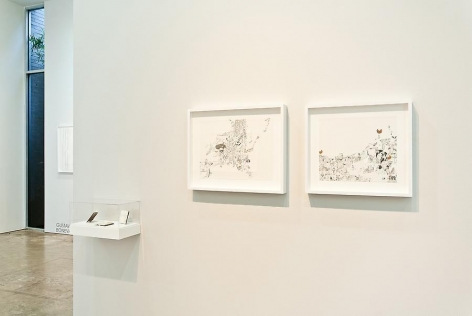 Marked Pages III, Ricardo Lanzarini, Sicardi Gallery installation view, 2011