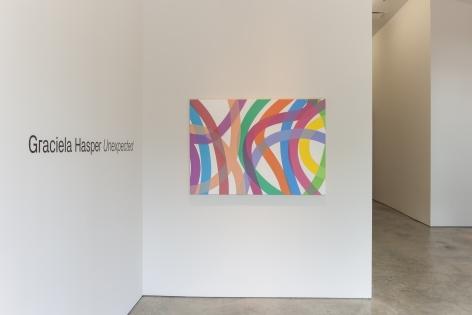 Installation view of the exhibitionGraciela Hasper: Unexpectedat Sicardi   Ayers   Bacino, 2019