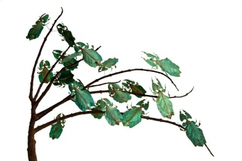 Maria Fernanda Cardoso, Green leaves, Edition 2/3, 2010.  Archival pigment print on 300g watercolor paper, 15 3/4 x 23 5/8 in.