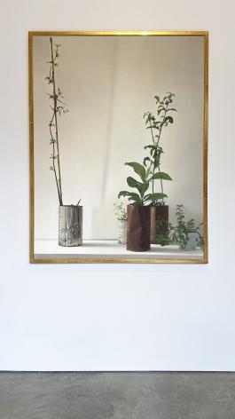 Claudio Bravo, Plants, 1972. Oil on canvas, 56 1/2 x 43 3/4 in. (143.5 x 111.2 cm.)